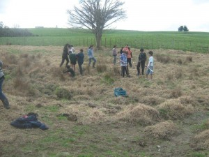 TNIS planting 2013 p1